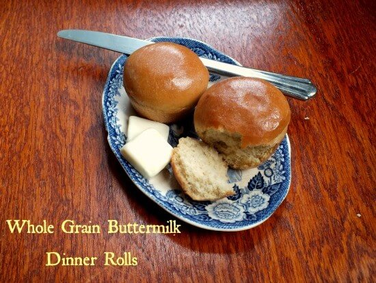 whole wheat dinner rolls|restlesschipotle.com