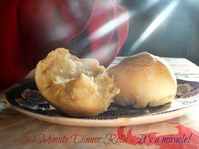 quick dinner rolls