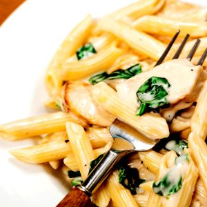 Closeup of grilled chicken Alfredo.