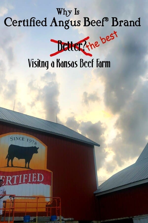 Storm clouds behind a barn with Certified Angus Beef logo on the side