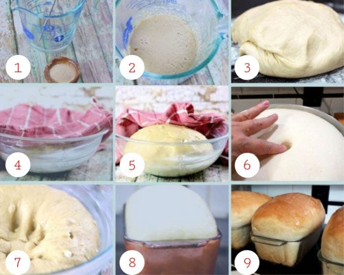 collage of step by step images for making amish white bread