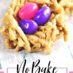 Birds nest cookies on a table with text overlay. This is for pinning to Pinterest.