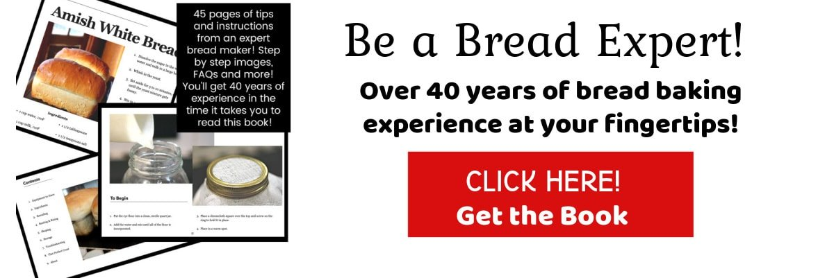 Clickable ad for bread baking book.