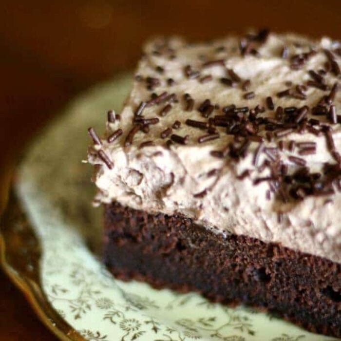 Square serving of chocolate sheet cake with whipped icing.