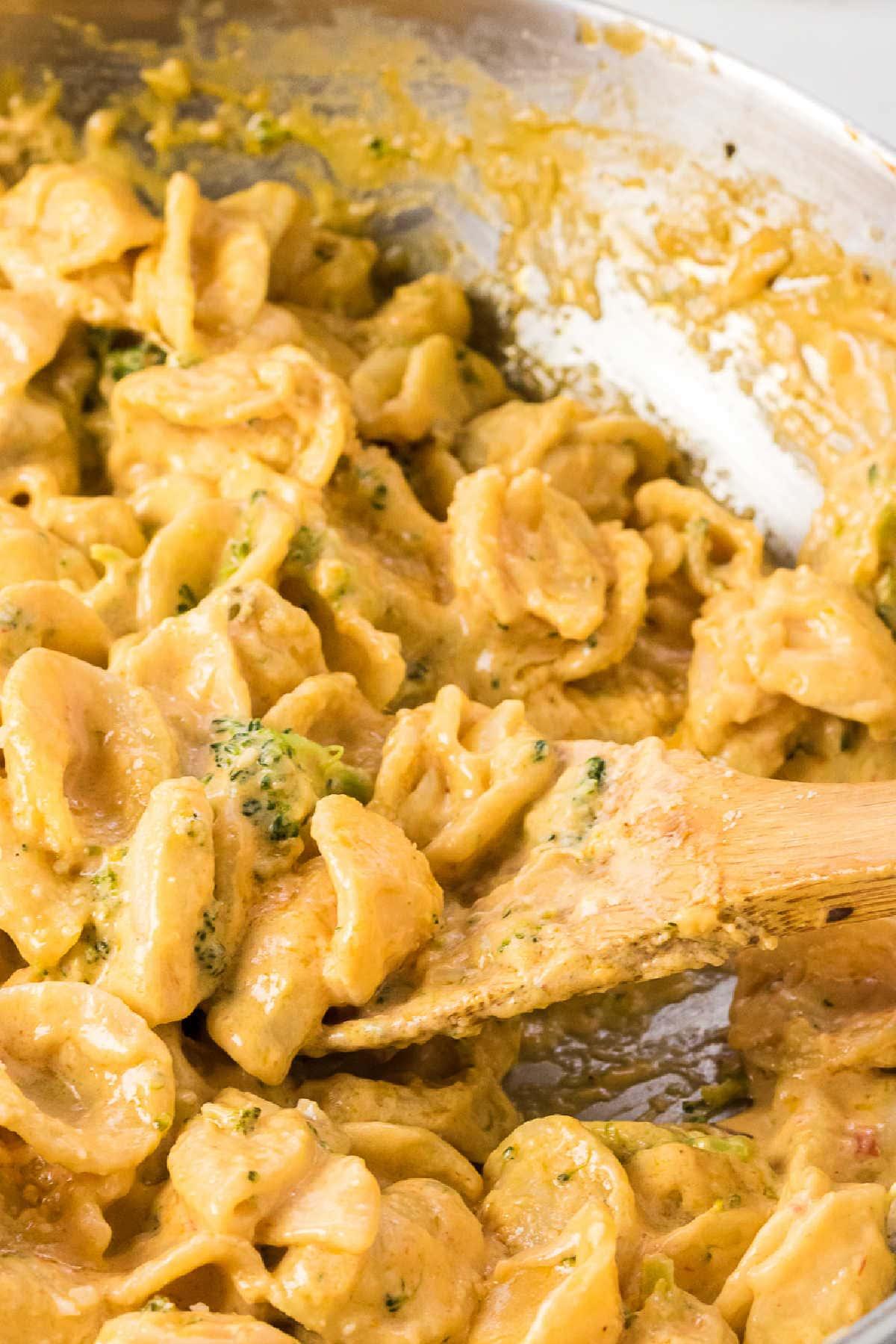 Closeup of pasta with broccoli.